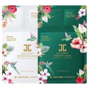 Jayjun anti dust facial mask sheet pack